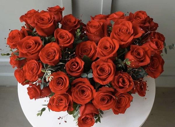 Ý nghĩa các loài hoa, ý nghĩa hoa hồng đỏ