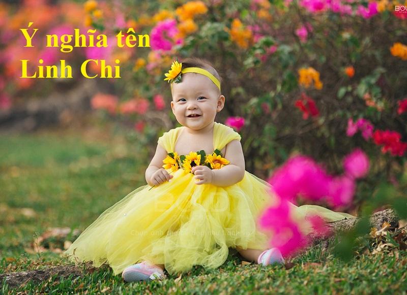 Ý nghĩa tên Linh Chi, tên Linh Chi có nghĩa là gì?