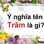 Ý nghĩa tên Trâm là gì & tên đệm cho con gái tên Trâm sang, độc