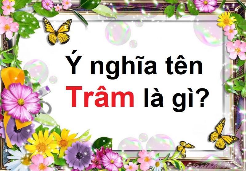 Ý nghĩa tên Trâm là gì? Tên Trâm có ý nghĩa gì?