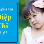 Ý nghĩa tên Diệp Chi là gì? 90% bố mẹ chắc chưa biết điều này
